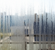 How To Deal With Window Condensation in Kitchener
